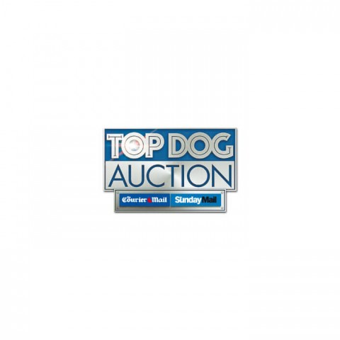 Avalde Digital Agency Sydney Brisbane Online Auction system development Auction Dollar